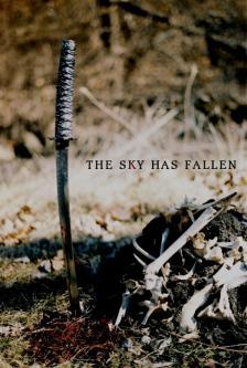 The Sky Has Fallen